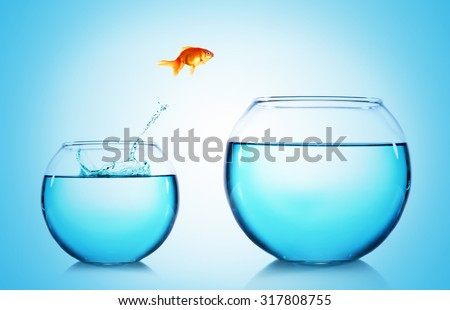 Goldfish jumping from glass aquarium,on blue background - stock photo
