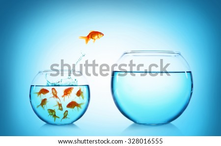 Goldfish jumping from glass aquarium, on blue background - stock photo