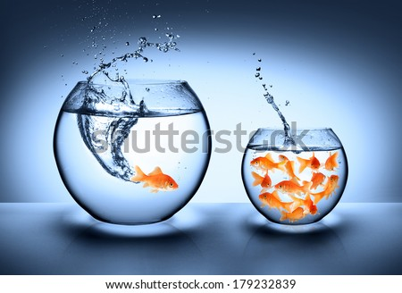 goldfish jumping - improvement concept - stock photo