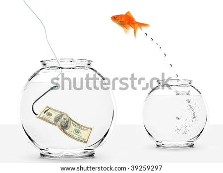 goldfish jumping into bowl with dollar on hook - stock photo