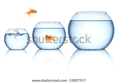 Goldfish jumping out of the fishbowl - stock photo