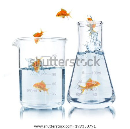goldfish jumping out of the water in test tubes - stock photo