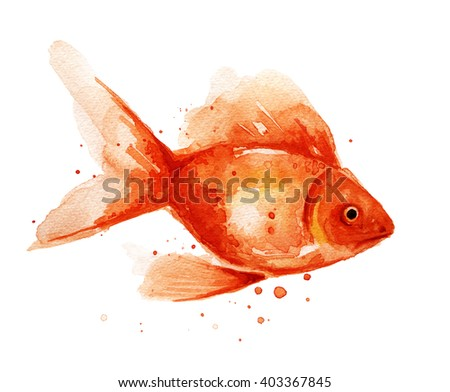 Goldfish. Watercolor illustration isolated on white background. Fish with watercolor splashes, stains.  - stock photo