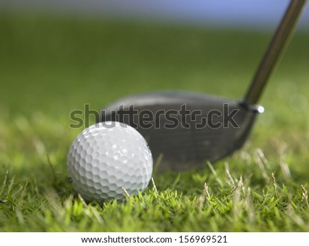 golf ball and golf club on the grass