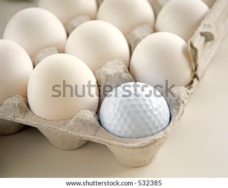 Golf ball in egg carton - stock photo