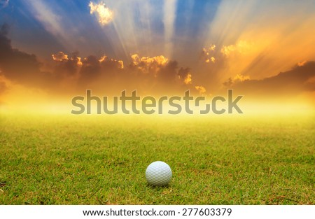 golf ball in fairway on sunrise background with fog - stock photo