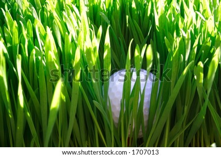 Golf ball in rough grass - stock photo