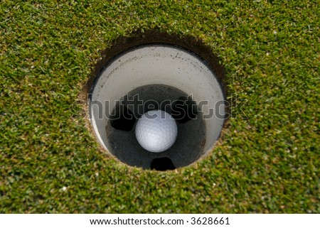 Golf ball in the cup - stock photo