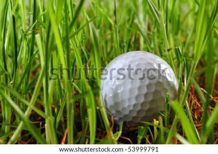 Golf ball in the rough.