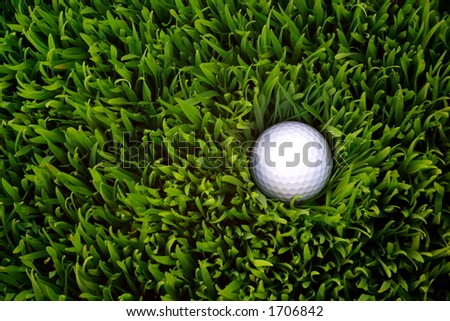 Golf ball in the rough grass - stock photo