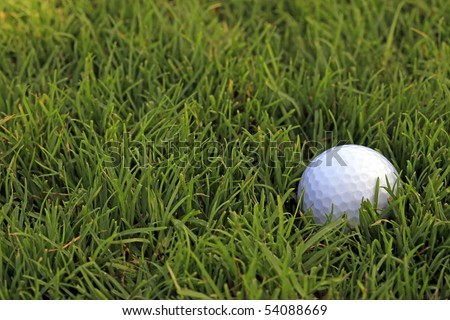Golf Ball in Thick Rough - Horizontal Format - stock photo