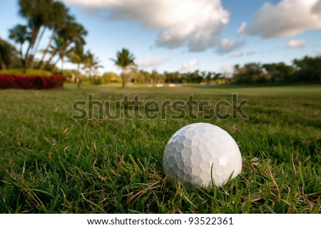 golf ball lies on grassy rough beside fairway of tropical florida course in late afternoon light, high res capture - stock photo