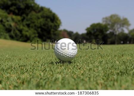 golf ball on a tee - stock photo