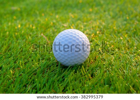 golf-ball on course