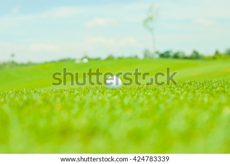 golf ball on fairway - stock photo