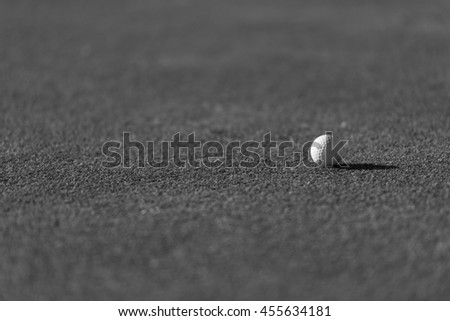 golf ball on fresh green grass of course - stock photo