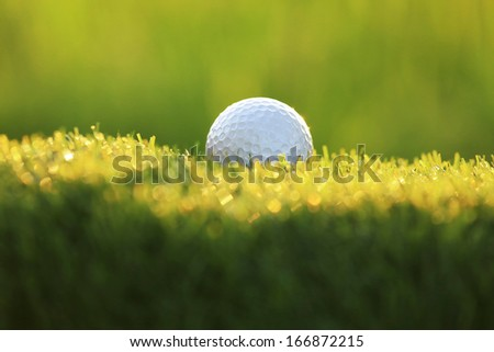 golf ball on green grass - stock photo