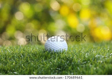 Golf ball on green grass background - stock photo