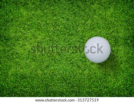 Golf ball on green grass of golf course. - stock photo