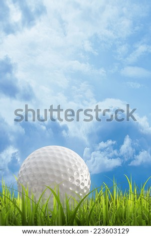 golf ball on green lawn  over a blue sky background. High resolution. 3D image  - stock photo