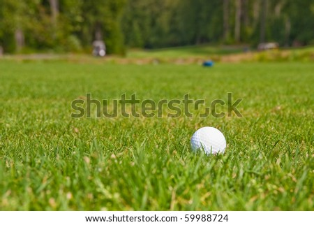 Golf ball on green. Shallow depth of field. Focus on the ball. - stock photo