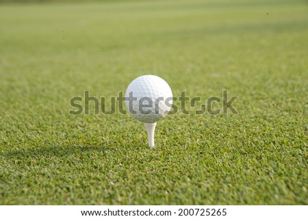 Golf ball on green tee  - stock photo