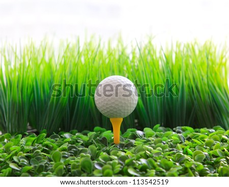 golf ball  on tee and green grass field - stock photo