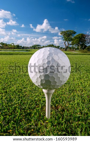 golf ball on tee in morning with wide depth of field focus - stock photo