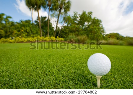 golf ball on tee of lush tropical course