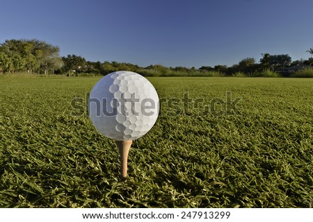 golf ball on tee on cloudless blue sky morning - stock photo