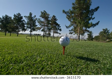 Golf ball on tee with tree line and blue sky - stock photo