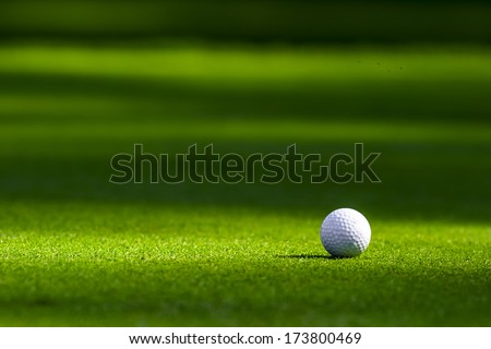 Golf ball on the green - stock photo