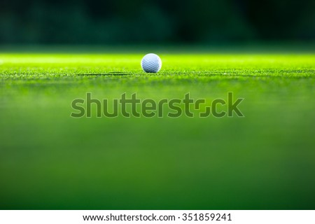 Golf ball on the lawn - stock photo