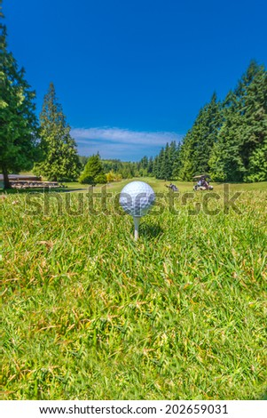 Golf ball on the tee at the beautiful golf course. Vertical. - stock photo
