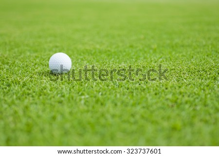 Golf ball sitting on a golf course putting green - stock photo