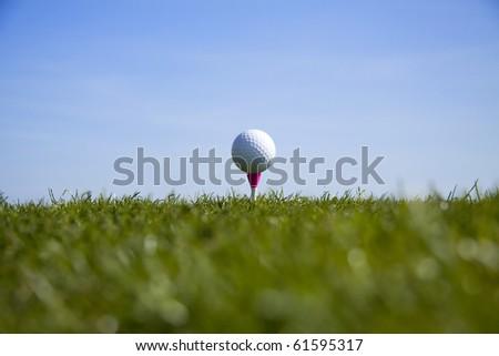 Golf ball tee up - stock photo