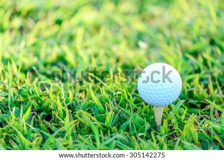 Golf ball with tee on early morning sunlight. - stock photo