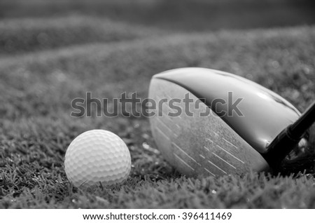 Golf club and ball in grass black and white color - stock photo