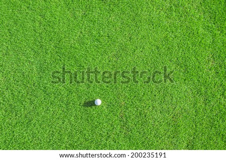 Golf club. Green golf field and ball in grass