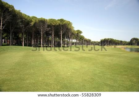golf club, green grass and sun shine - stock photo