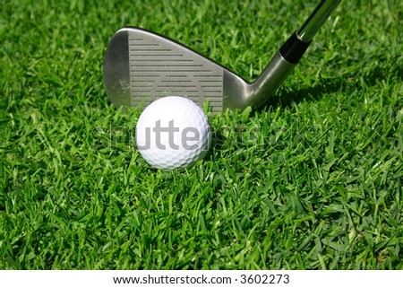 Golf club with golf ball on a grass - stock photo