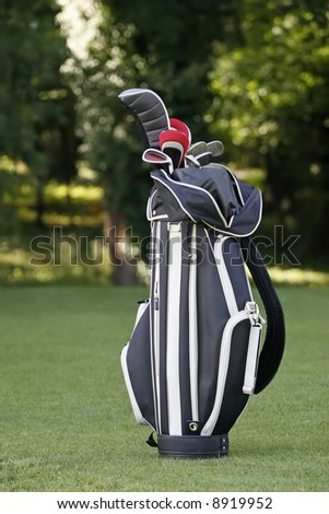 Golf clubs in a bag - stock photo