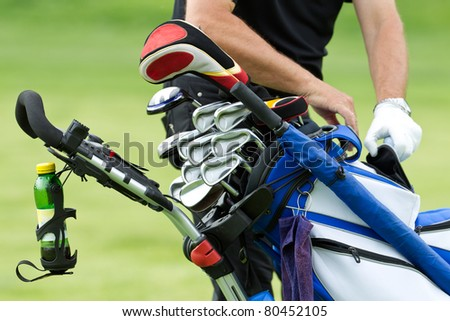 golf clubs in a bag and the caddie is reaching for it - stock photo