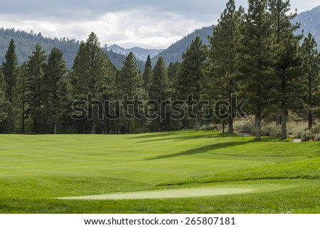 Golf Course Fairway lined with Tall Pine Trees; storm clouds entering the scene.  Montreaux Golf Course  - stock photo