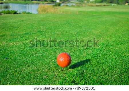Golf course green grass field and lake trees on sunny day outdoors background