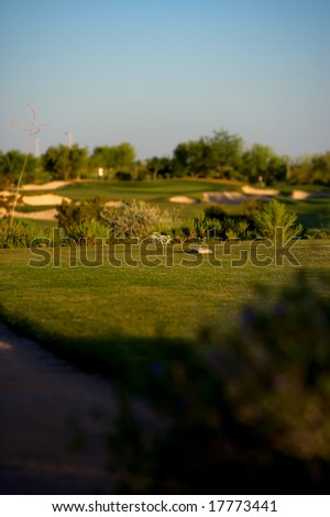 Golf course in the Arizona desert with mountains in the late afternoon sun