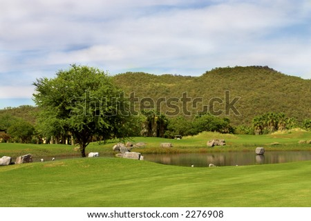 Golf course landscape in the mountains in summer.