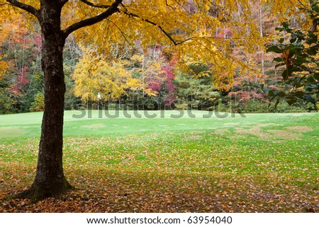 Golf course pin and flag surrounded by autumn foliage