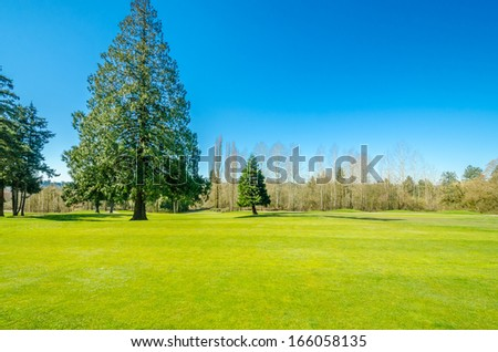 Golf course with gorgeous green - stock photo