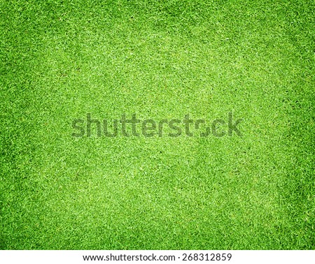 Golf Courses green lawn - stock photo